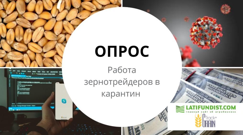 Как зернотрейдеры работают в условиях ограничительных мер карантина (ОПРОС)